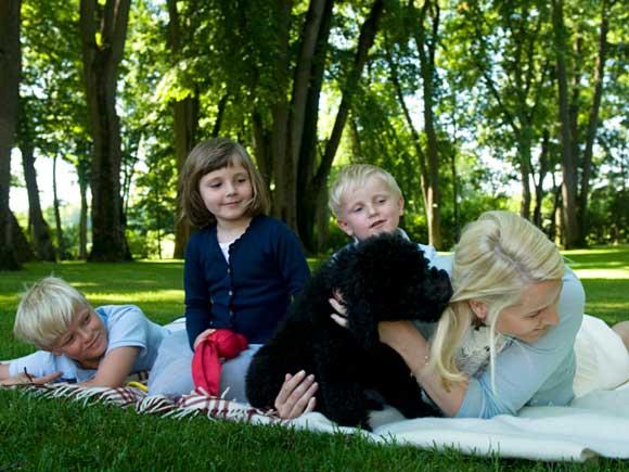 a936a1a5a0afedec8012d994ae141beb509299d840a5e Рейтинг стран, благоприятных для детства и материнства